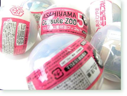 0801asahiyama00